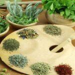 قصد استفاده از سبزی خشک در غذاها را دارید