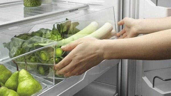روش نگهداری انگور در یخچال