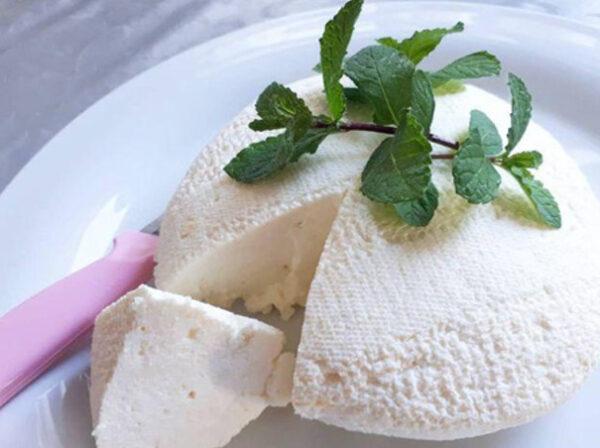 طرز تهیه پنیر بدون قرص