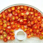 طرز خشک کردن ورقه های میوه و گوجه سبز در افتاب