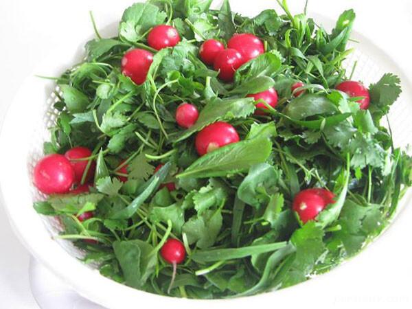 طرز تهیه و نگهداری صحیح آب میوه و سبزی تازه