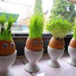 طریقه ساخت سبزه عروسکی
