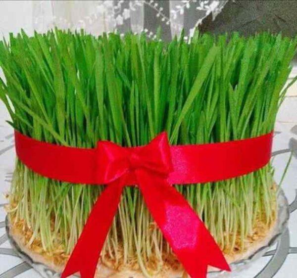 چطور سبزه عید درست کنیم