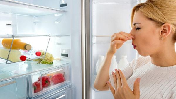 از بین بردن بوی یخچال