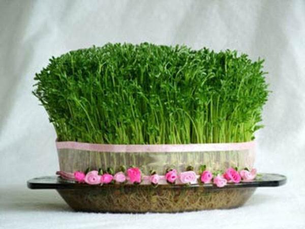 مدل های جدید تزئین سبزه برای نوروز