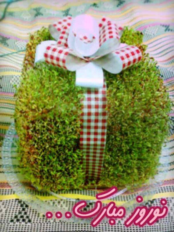 سبزه به شکل جعبه هدیه
