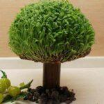 آموزش درست کردن سبزه به شکل درخت
