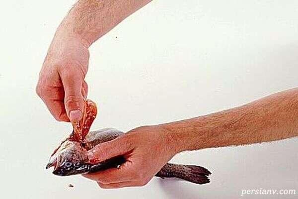 پاک کردن ماهی قزل آلا