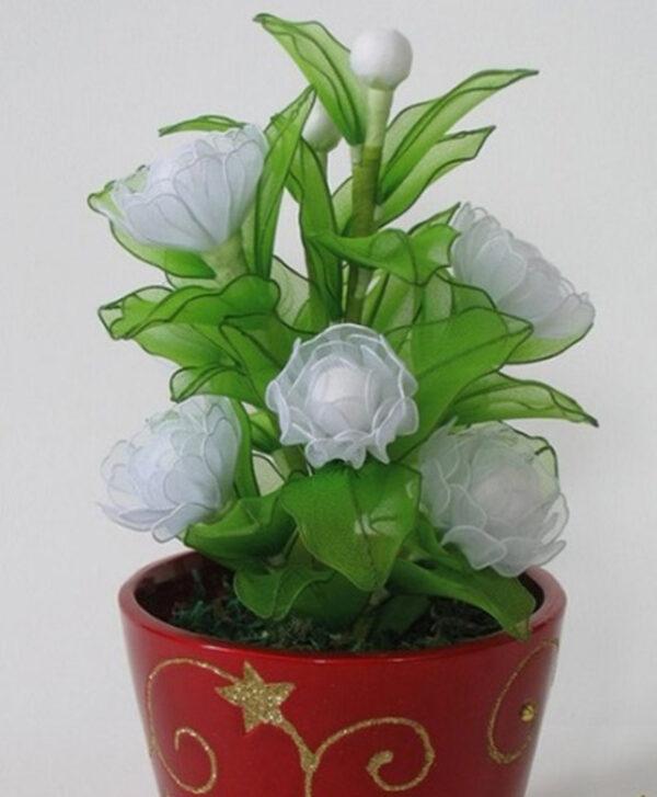 گل جورابی