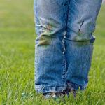 نکاتی برای جلوگیری و پاک کردن لکه های چمن