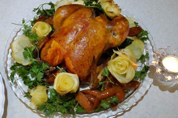 دورچین مرغ شکم پر