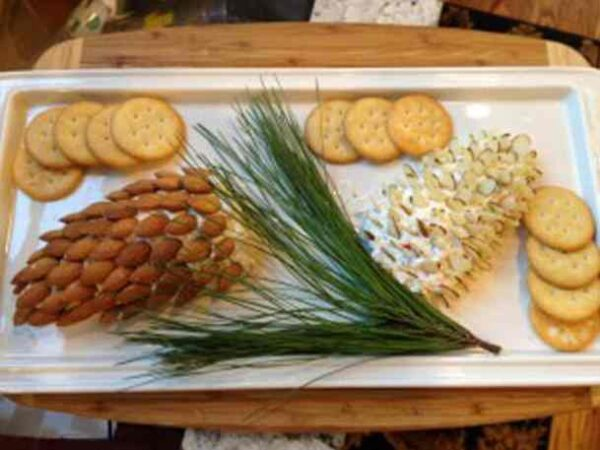 تزیین توپ های پنیری و بادام به شکل میوه کاج