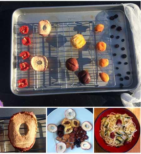 آموزش مرحله ای خشک کردن میوه ها در آفتاب+تصاویر