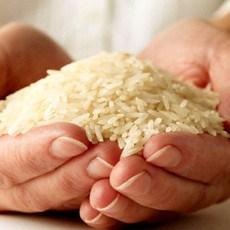 راه تشخیص برنج مرغوب ایرانی