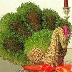 کاشت سبزه به شکل طاووس