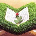 آموزش کاشت سبزه به شکل رحل قرآن+تصاویر
