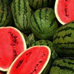 راهنمای تشخیص و خرید هندوانه شیرین