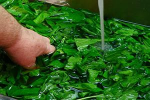 بهترین روش برای شستشو و سالم سازی سبزیجات