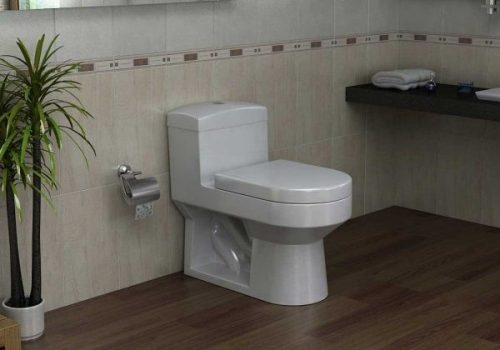 از بین بردن مگس توالت