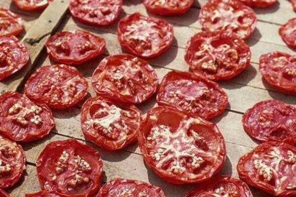 خشک کردن گوجه سبز در افتاب