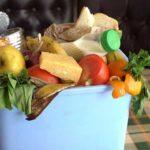 چه عواملی باعث خراب شدن غذا می شود ؟
