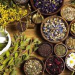 گیاهانی با خواص دارویی