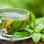 ده فایده چای سبز را بشناسید