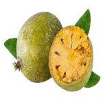 آشنایی با میوه بکرایی و خواص ضد سرطانی آن