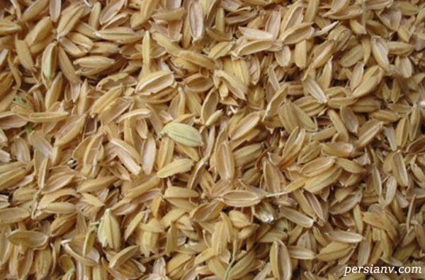 خواص دارویی سبوس برنج
