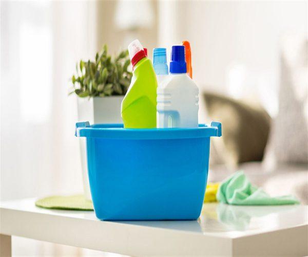 با این ۵ گیاه خانه خود را ضد عفونی کنید !