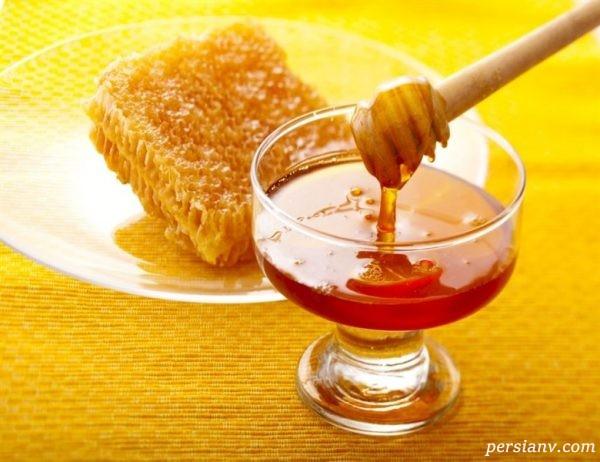 مواد غذایی سرشار از آنتی بیوتیک