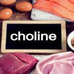 ماده ای مغذی به نام کولین چیست و در چه غذاهایی وجود دارد؟