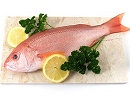 ۷ دلیل عالی برای خوردن ماهی