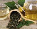 گیاه گزنه ، برای رفع خستگی و کم خونی