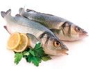 خواص شگفت انگیز ماهی را بدانید! خانم ها بیشتر ماهی بخورید!