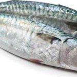 پاسخ به سوالاتی که در مورد ماهی چرب پرسیده میشود.