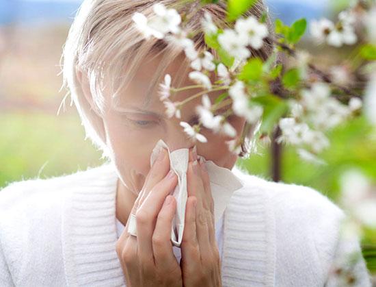 آلرژی را با این آنتی هیستامین های طبیعی از خود دور کنید