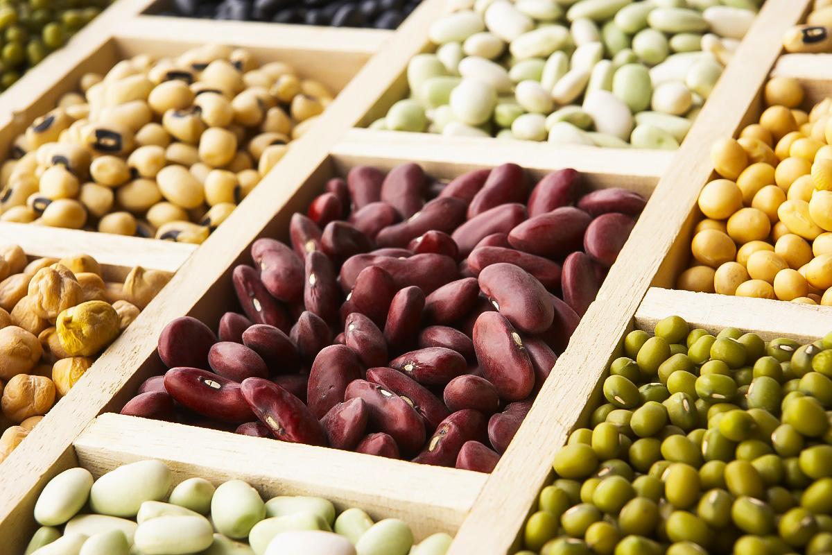 خواص پروتئین های گیاهی