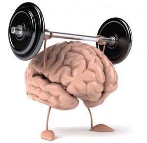ماده ای که کارایی مغز سالمندان را افزایش می دهد
