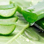 قویترین نسخههای گیاهی برای کنترل علائم اوریون