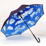 با این چترهای زیبا در هوای بارانی هم شیک باشید