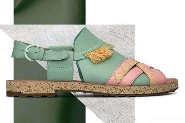 کفش های برند کمپر