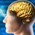 استرس مغز کودکان را تغییر میدهد