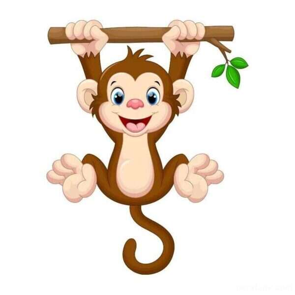 قصه کودکانه میمون بازیگوش