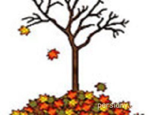 شعر کودکانه فصل پاییز