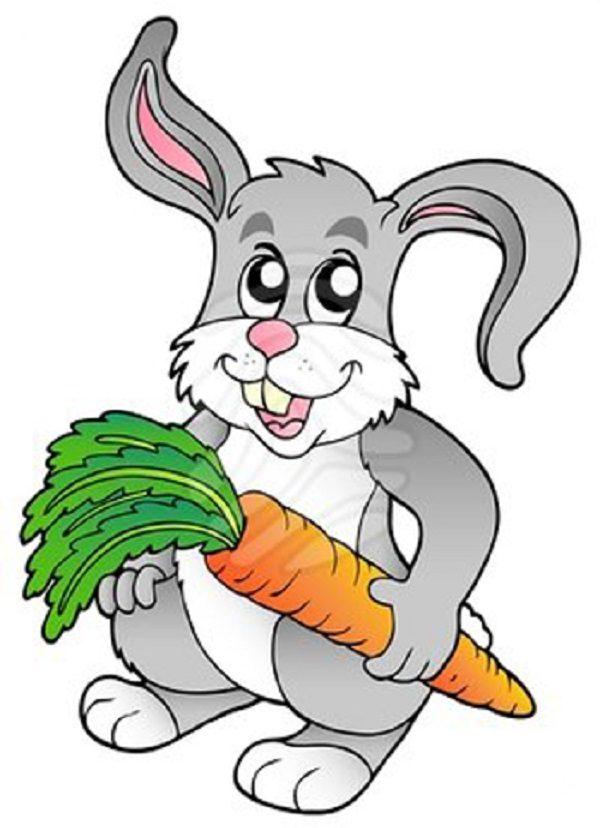 قصه کودکانه خرگوش باهوش