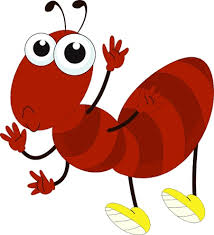 قصه مورچه بی دقت
