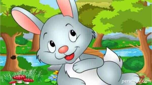 شعر کودکانه آقا خرگوشه