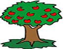 قصه کودکانه درخت سیب