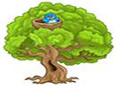 قصه کودکانه پرنده کوچولویی در جنگل
